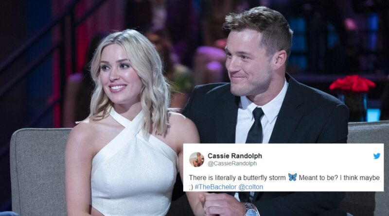 Bachelor Nation Twitter Reactions From The Bachelor Finale Part 2