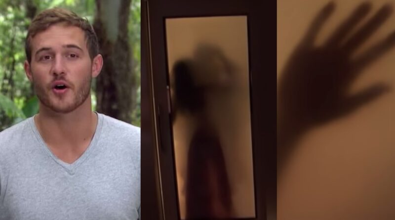 Fans Finally Figured Out Who Peter Weber is Making Out With Behind The Glass Door